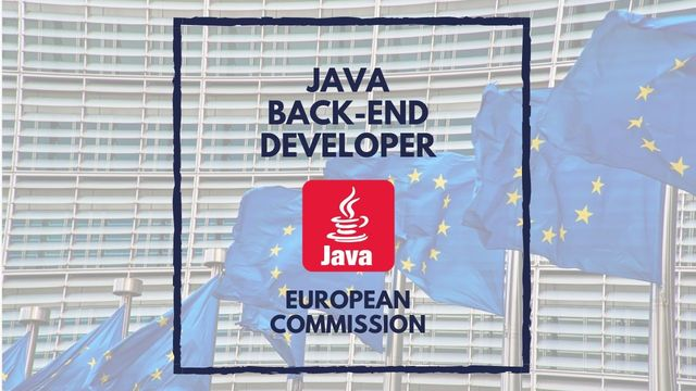 IT Job - Java Back-end Developer at the European Commission - Sprint CV