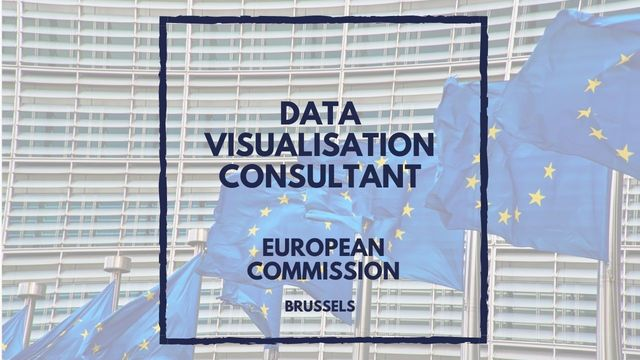 IT Job - Data Visualisation Consultant at the European Commission - Sprint CV