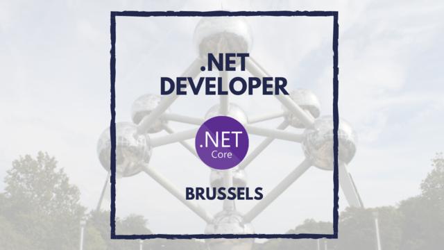 IT Job - .Net Developer in Brussels - Sprint CV