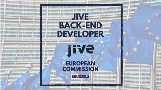 IT Job - Jive Back-end Developer at EEAS - Sprint CV