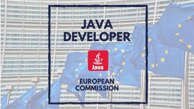 IT Job - Java Developer at the European Commission - Sprint CV