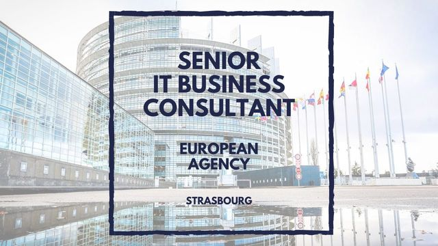 IT Job - Senior IT Business Consultant at euLISA - Sprint CV