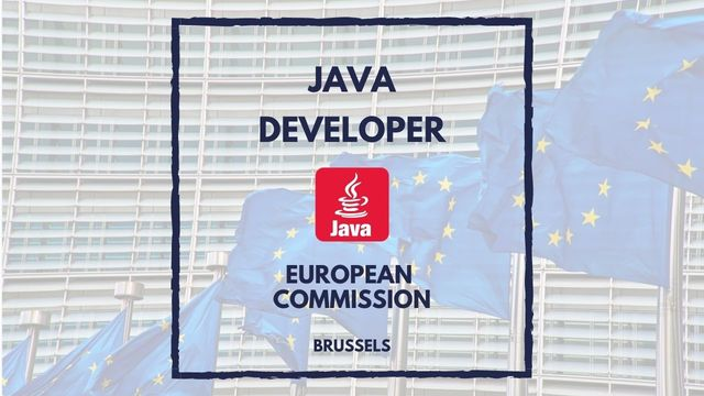 IT Job - Java Developer with 5 years experience for DG MARE at European Commission - Sprint CV
