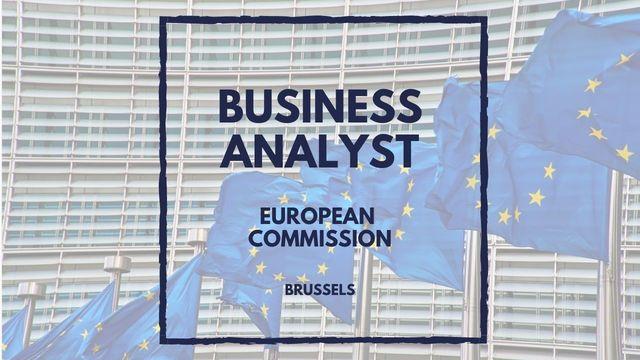 IT Job - Senior Business Analyst at European Commission - Sprint CV