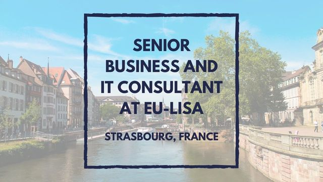 IT Job - Senior Business and IT Consultant at eu-LISA - Sprint CV