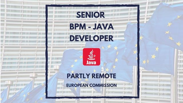IT Job - Senior BPM-Java Developer at European Commission - Sprint CV