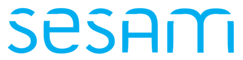Sprint CV supports SESAM CV template
